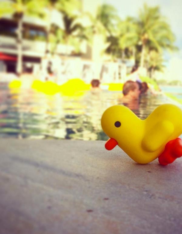 keyring duck canar heart yellow pink blue orange dhink292 3