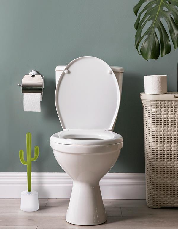 toiletbrush cactus green dhink317 5